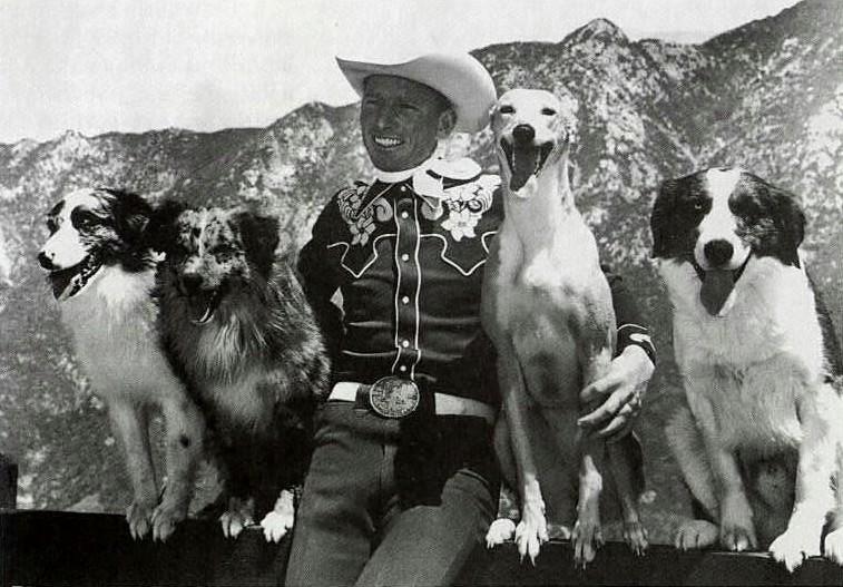 jaysislerjohnjokergreta - Der Australian Shepherd