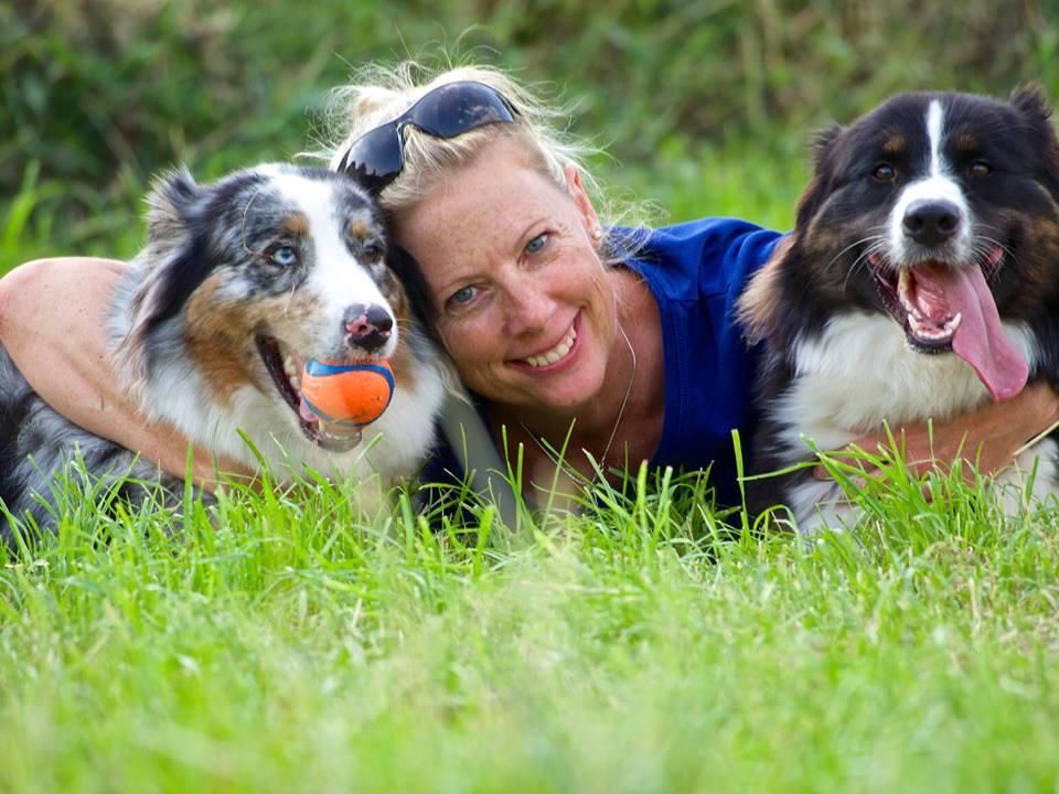 Josie Luke Roy Welpen Emma Paula Bild 1 - Integration eines zweiten Hundes