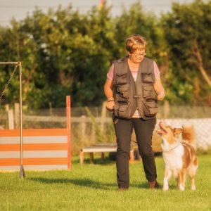 Layla Sammy Welpen Juna beim Training Bild 10 300x300 - Nachzucht Layla & Sammy