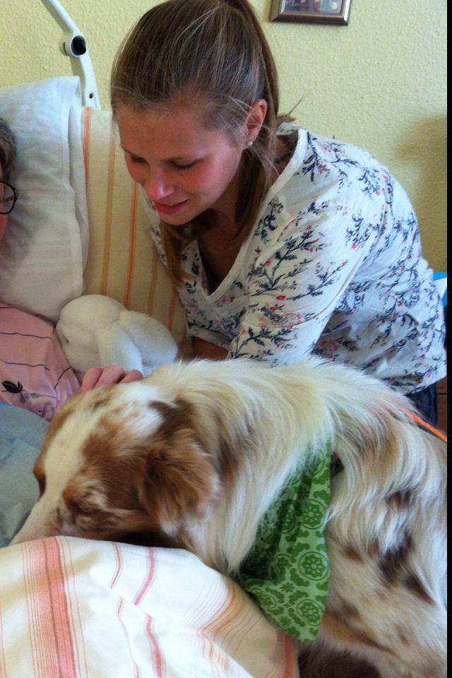 unknown 5 - Einsatz als Therapiehund
