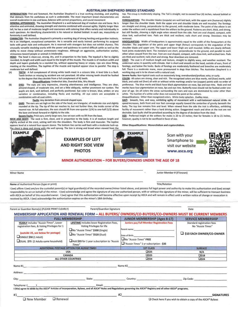 asca registrierung leer 2 - ASCA Papier beantragen Anleitung