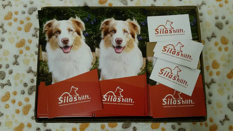 Josie Roy Welpen Silas ist Therapiehund Bild 3 - Einsatz als Therapiehund