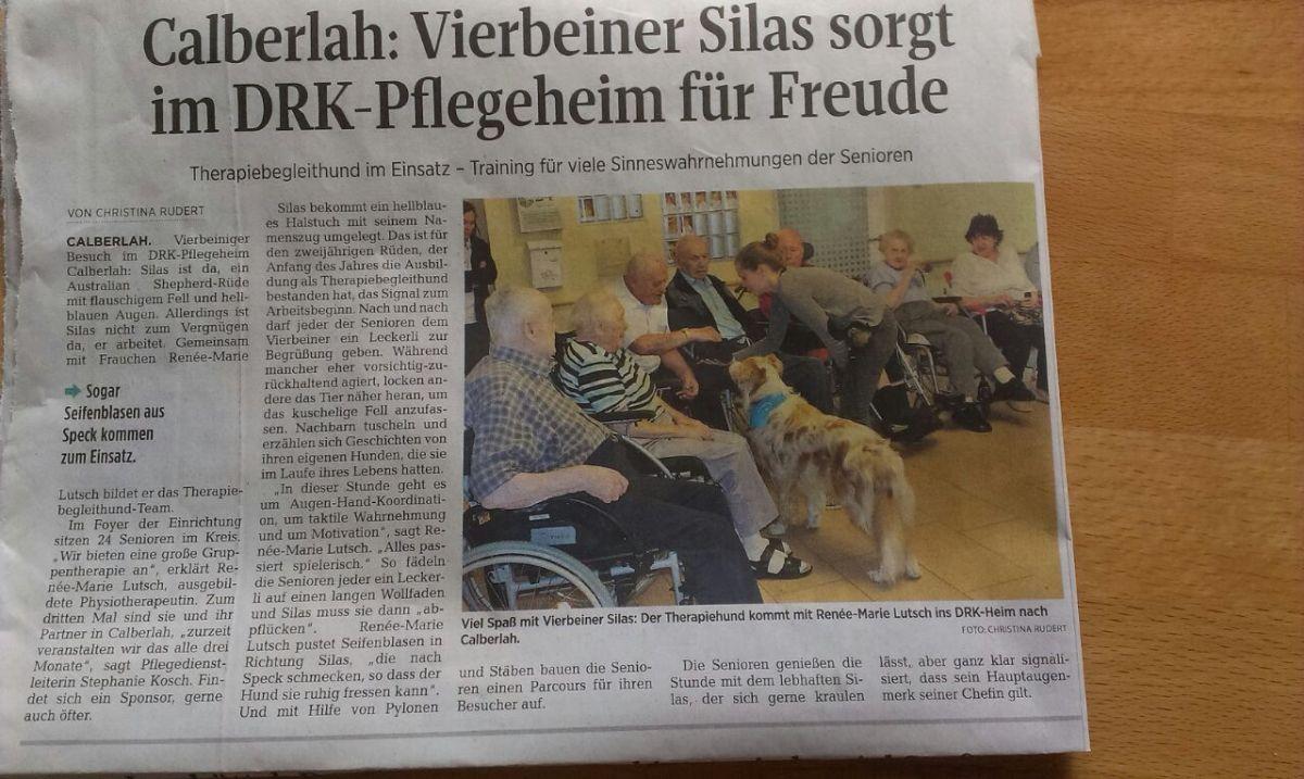 Josie Roy Welpen Therapiehund Silas wieder in Zeitung Beitragsbild - Einsatz als Therapiehund