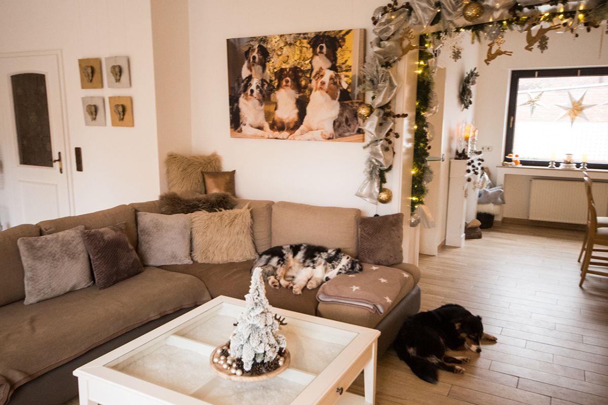 Unser Zuhause im Weihnachtslook Teil 4 Bild 8 - Gefahren an Weihnachten