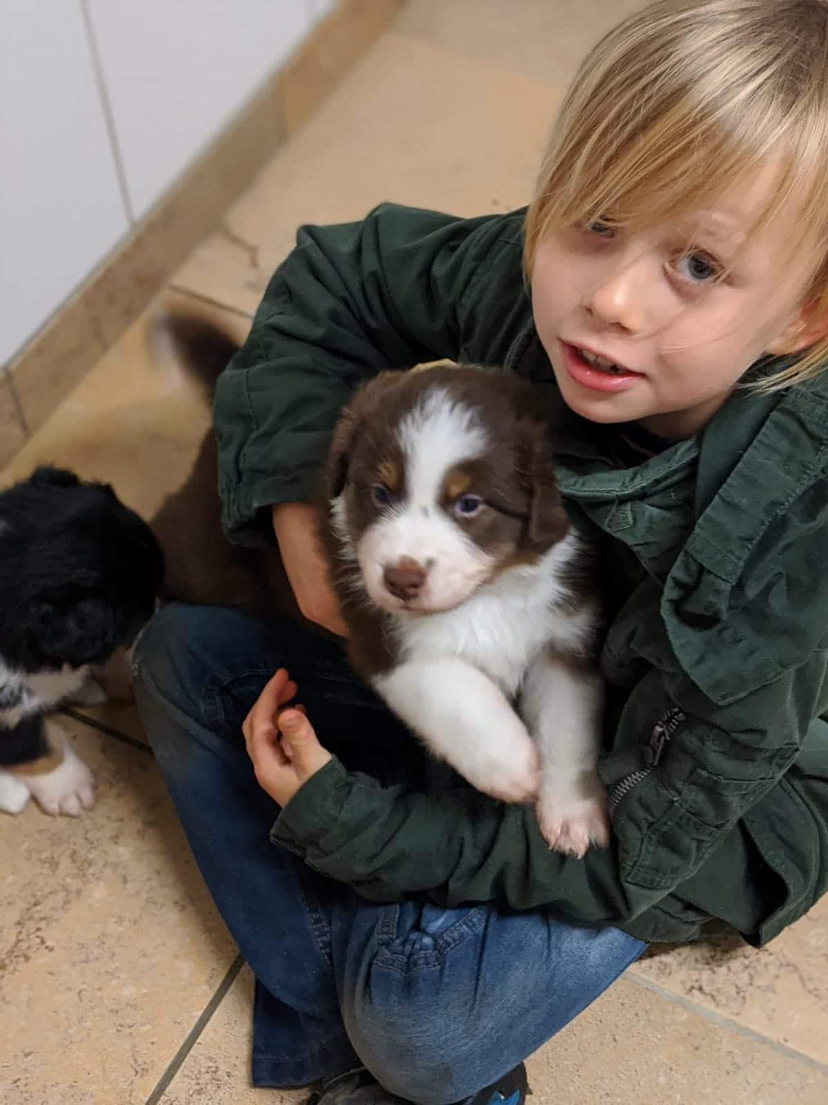 Seven Henry Welpen Kinder die Erste Bild 5 - Einsatz als Therapiehund