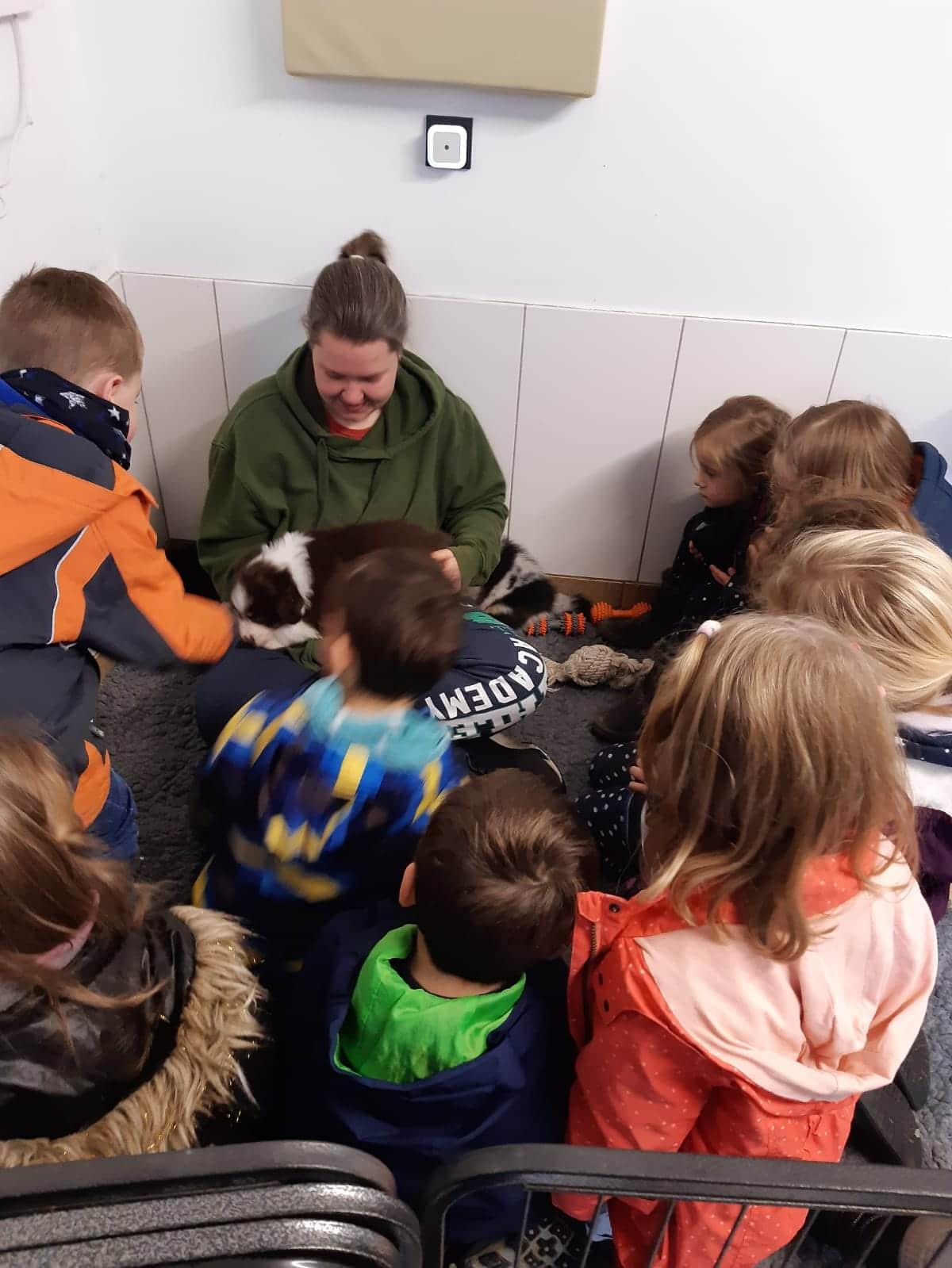 Seven Henry Welpen Kinder volle Dröhnung Bild 3 - Einsatz als Therapiehund