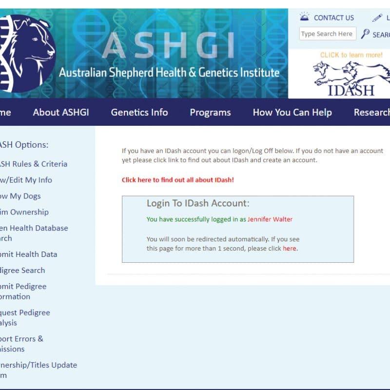 login 2 800x800 - ASHGI IDASH Anleitung - Wie trage ich meinen erkrankten Aussie ein?