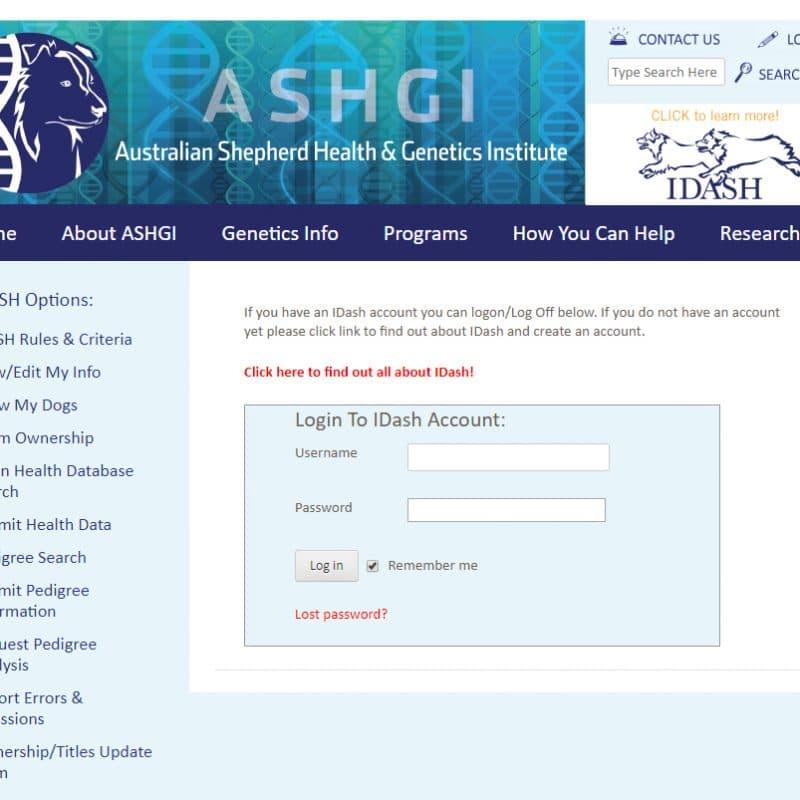 login 800x800 - ASHGI IDASH Anleitung - Wie trage ich meinen erkrankten Aussie ein?