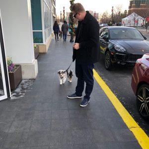 9b31bc17 e5d2 4019 81de a1b155c7b24c 300x300 - Hund in die USA importieren