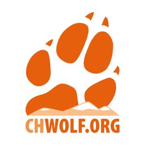Ranz- oder Paarungszeit   CHWOLF.org