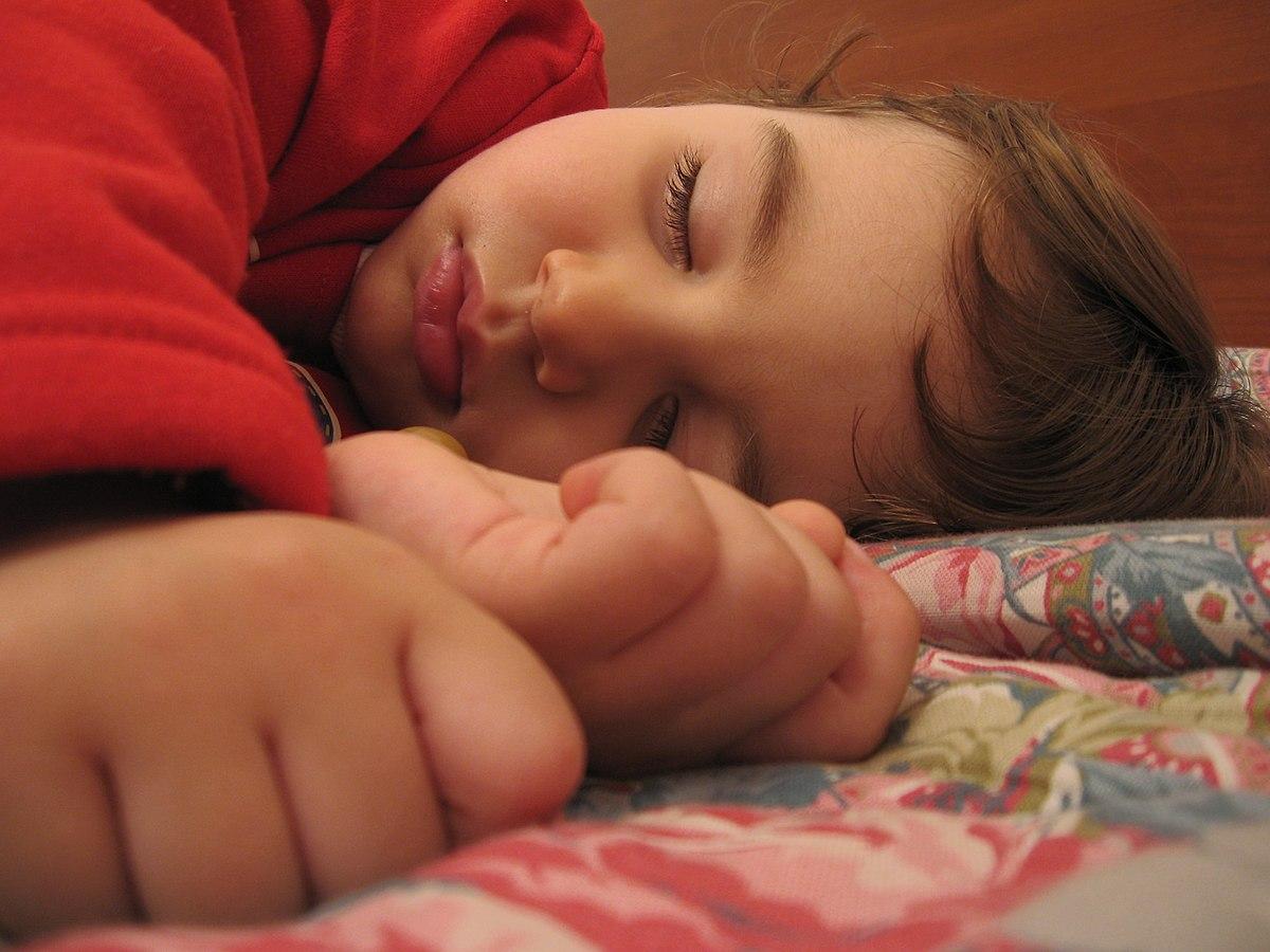 Schlaf – Wikipedia