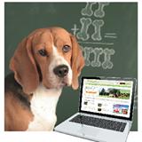 Sachkundenachweis für Hundehalter: Übersicht Bundesländer