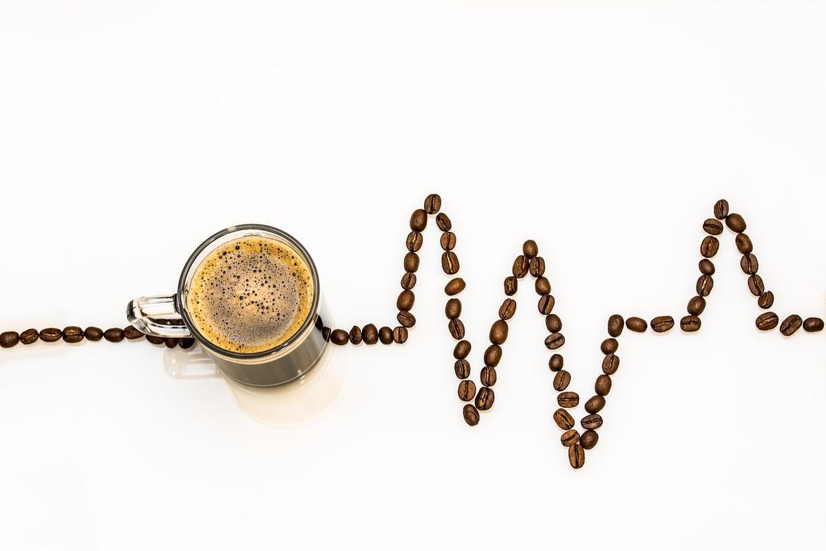 Kaffeevergiftung bei Hunden
