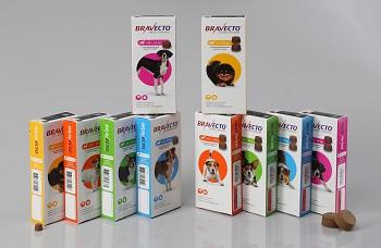Bravecto® Kautablette für Hunde - MSD Tiergesundheit Deutschland