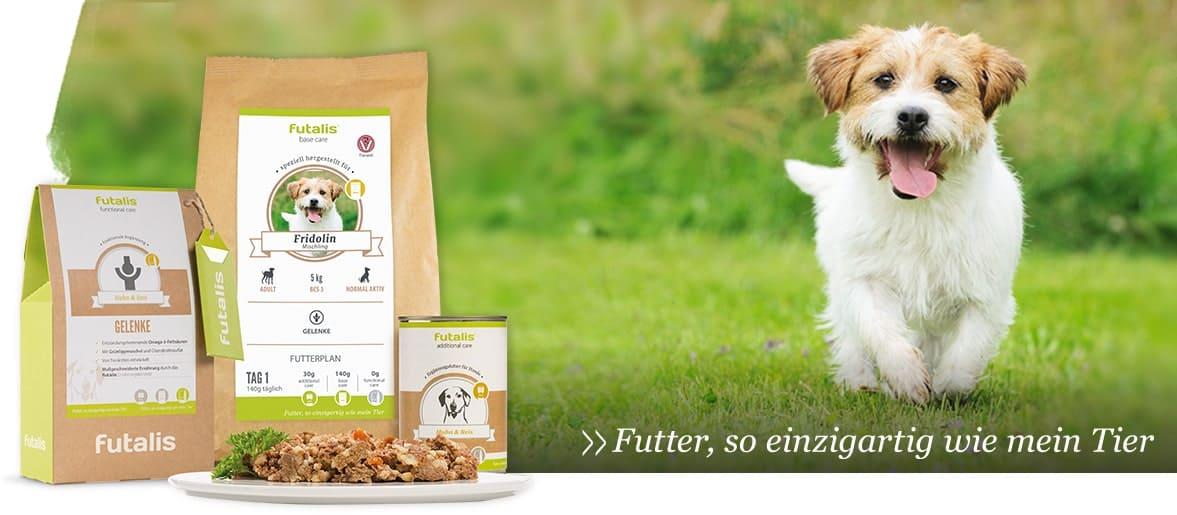 Body Condition Score bei Hunden (BCS) » futalis.de