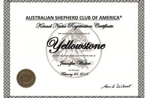 ASCA Yellowstone Kennel Name Registration 300x200 - Infos