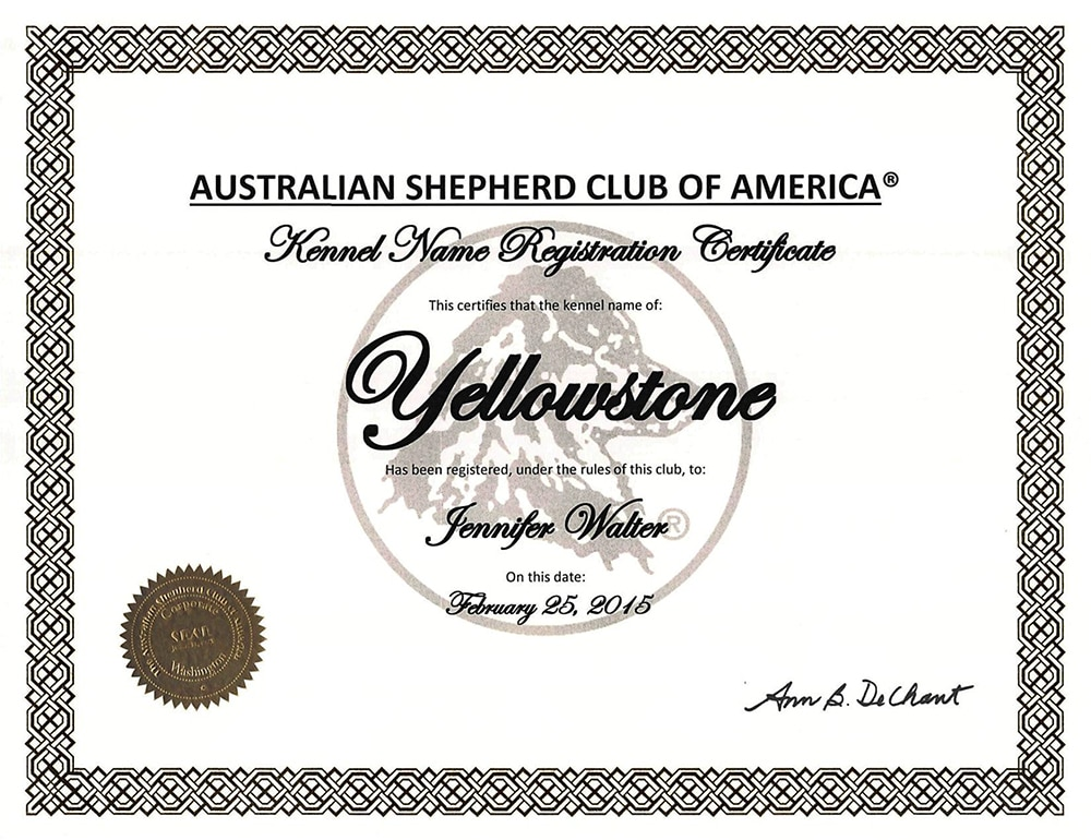 ASCA Yellowstone Kennel Name Registration - Infos