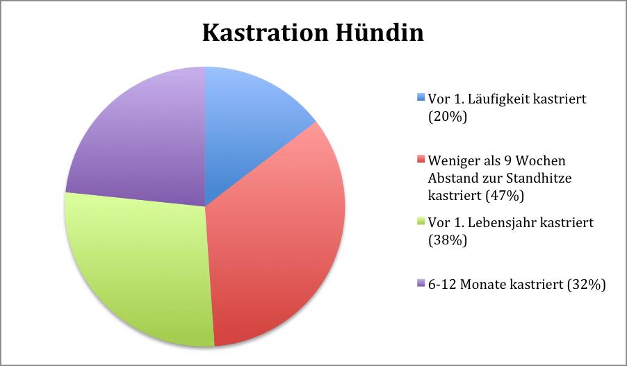 Kastration Hündin - Kastration-Aufklärung
