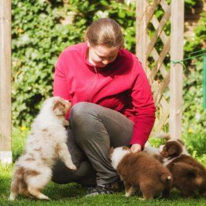 Maisy Stuart Impressionen 103 300x300 - Nachzucht Maisy & Stuart