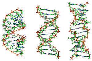 info Genetik - Infos