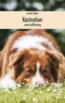 kastration_cover