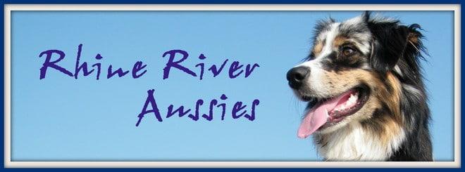 rhine river aussies - Links