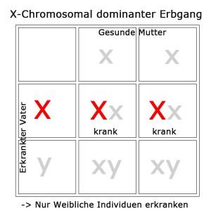 x-chromosomal-dominant-2