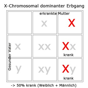 x-chromosomal-dominant1